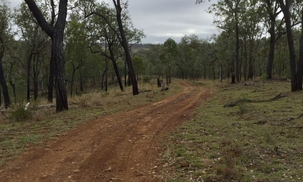 Route surface down to Yarraman Creek