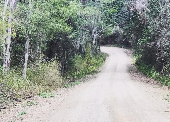 Quite roads