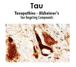 tau image.PNG