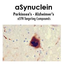 Asyn image.PNG