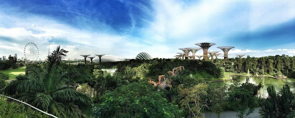 Gardens by the Bay - a spectacular team-building stop