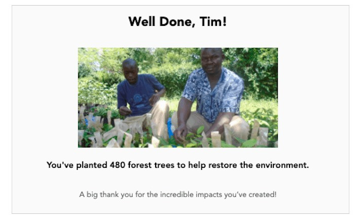 Just planted 480 trees to offset our public transport and cabs for the next 5 years – Tim Wade