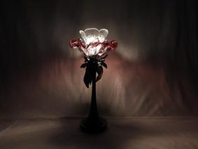 Display in the dark