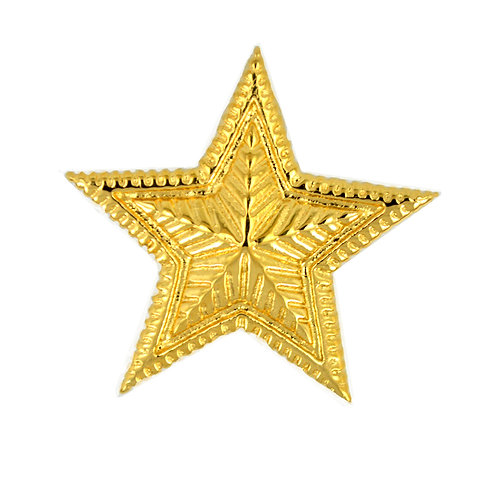 STAR Gold Plated Pendant 86-1838