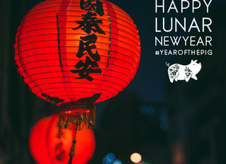 2019 Year of the Pig 己亥年