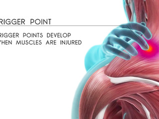 About Trigger Point