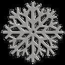 SNOWFLAKE silver COLOUR 3D 2021.png