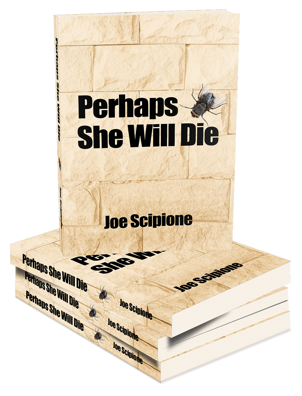 Perhaps She Will Die 3D Book Stack.png