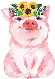 Pigs_Sunflower.png