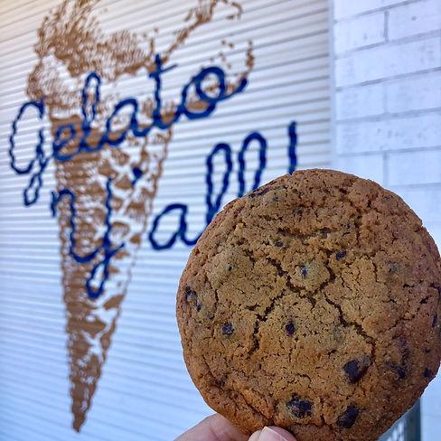 HS Choc Chip Cookie.jpg