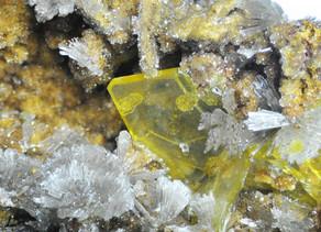 Wulfenite from Blue Bell Mine CA.