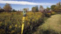 land-surveyor.jpg