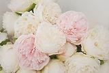 Pfingstrosen künstlich rosa weiß