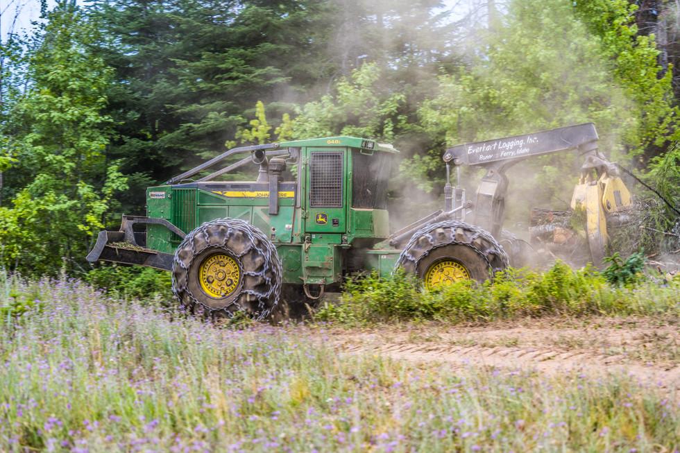 Everhart Logging
