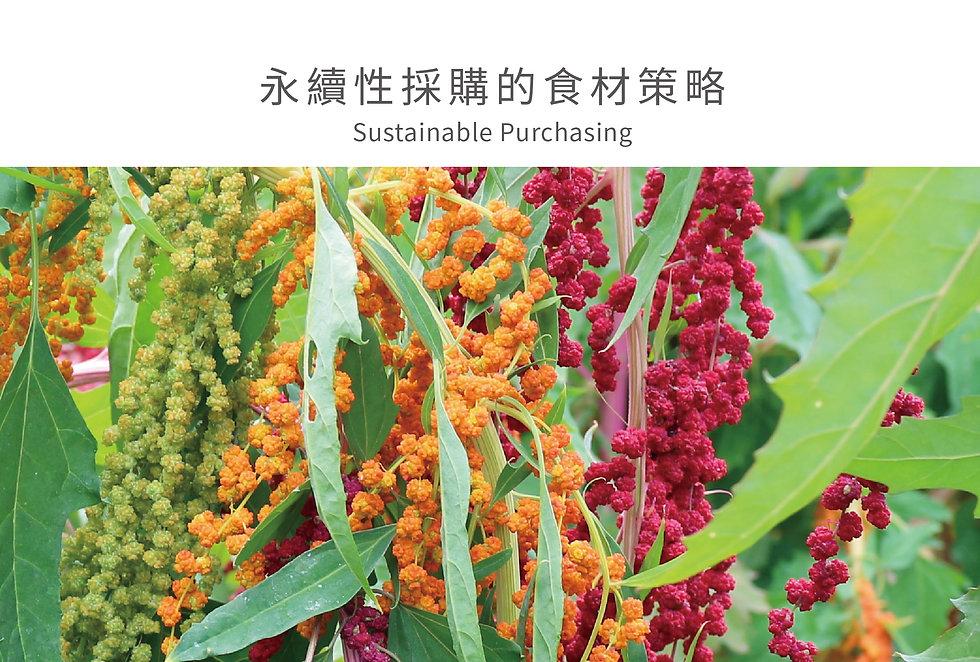 台東原生種紅藜