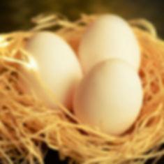 使用整顆台東在地新鮮雞蛋