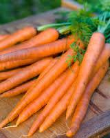 Carrots Red Danver