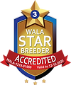 North Austin WALA Star Logo--1219-01060.