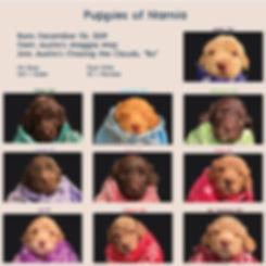 Week-4-Picture-Book.jpg