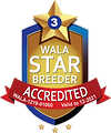 North Austin WALA Star Logo-2021.png
