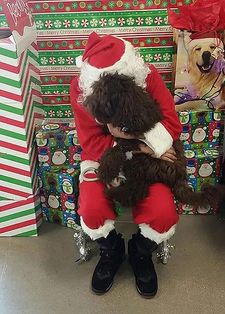 Bo-Christmas.jpg