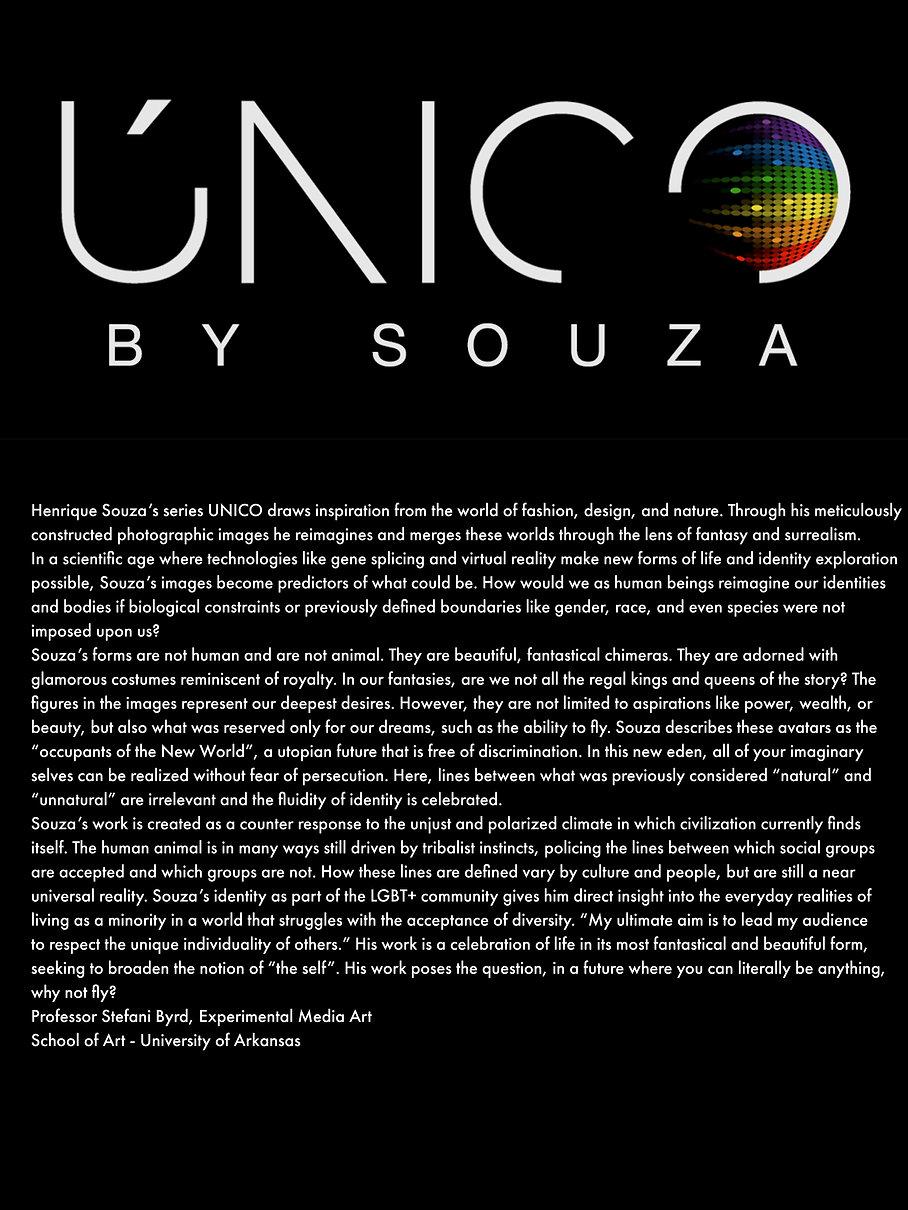 UNICO logo English.jpg