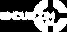 logo+selo-Sinduscom-Vales branco.png