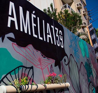 grafite-amelia.png