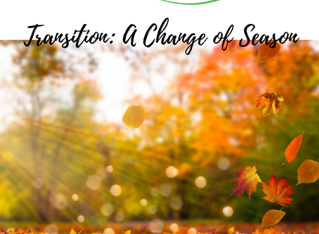 Transition: A Change of Season