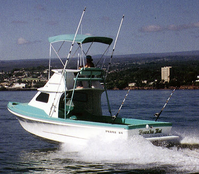 Force Marine 25 Flybridge
