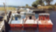 Ika Shibi Force