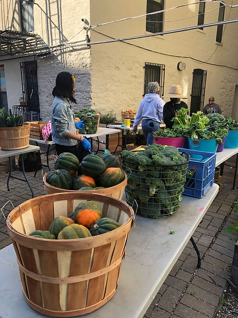 Market Backyard.jpg