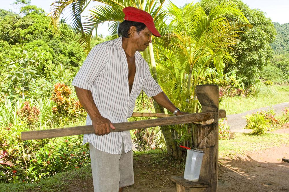 making cane juice