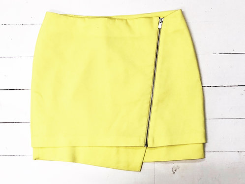 H&M Skirt with Zip