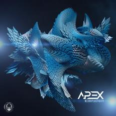 Apex - Neuroplasticity