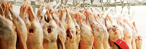 Mona's Fine Meats London's Halal Butcher and Meat Shop