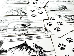 wolfcardtop.jpg
