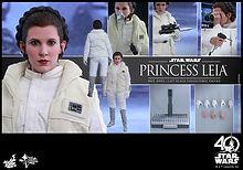 Leia Hoth.jpeg