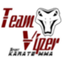 Team Viper Decal.png