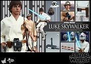 Luke anh image.jpg