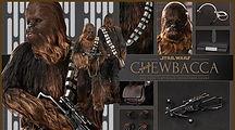 Chewie image.jpg