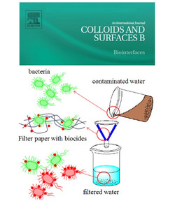 Hosseinidoust-filter-bioactive