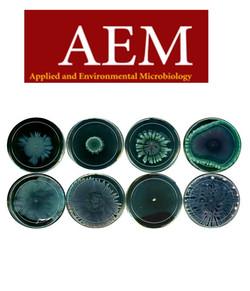 Hosseinidoust-phage-evolution-aem