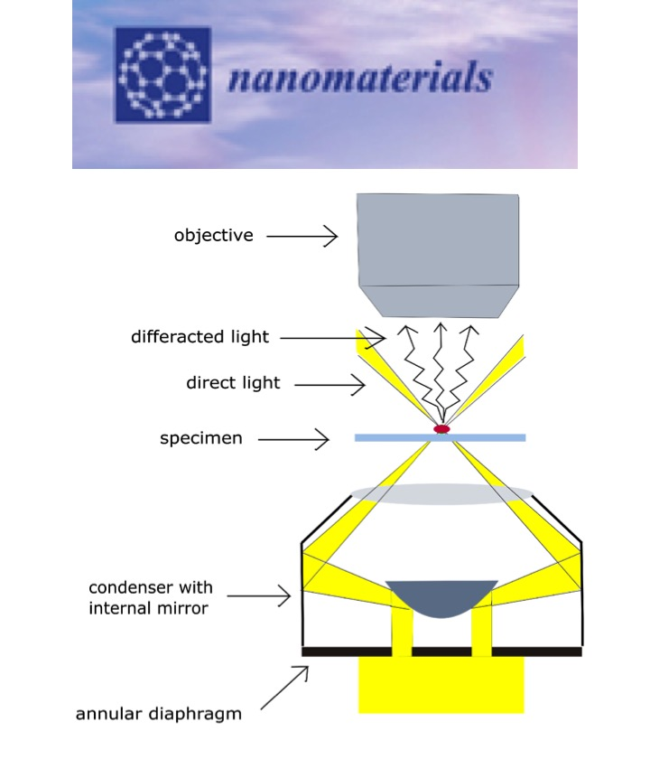 Viral Nanoparticles