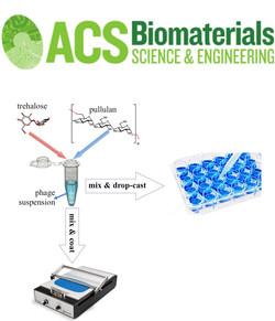 Phage-based biomaterials