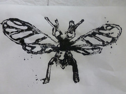 insectos..JPG