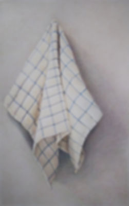 dish towel .jpg
