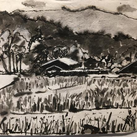 Foothills Farm
