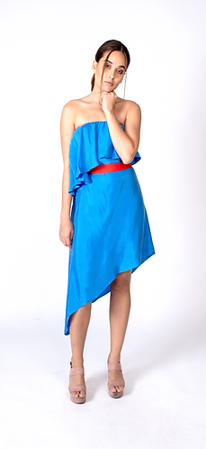 Blue Celine Dress