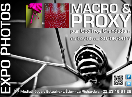 EXPO PHOTOS MACRO & PROXY